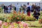 Un Royal Concours International de Roses Nouvelles du Roeulx 2019 réussi !