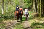 Un tout nouvel itinéraire pour les cavaliers à Mignault