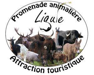 Promenade animalière à la Ligule