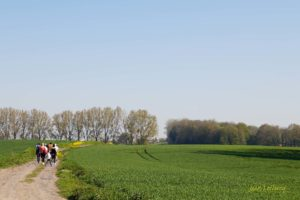 La Haye du Roeulx (Balade N° 1 - 8,5 km)