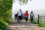 Balades accompagnées de l'Office du Tourisme du Roeulx Édition 2021